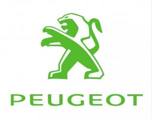 Peugeot Timingset car tool