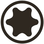 Bit (5/16) external hexagon T profile (for Torx)